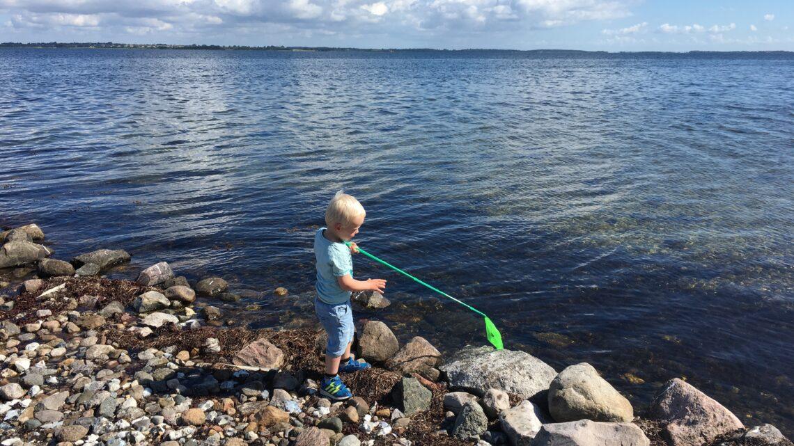 Sommer i Danmark for børn