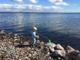 Sommerferie ved vandet i Danmark