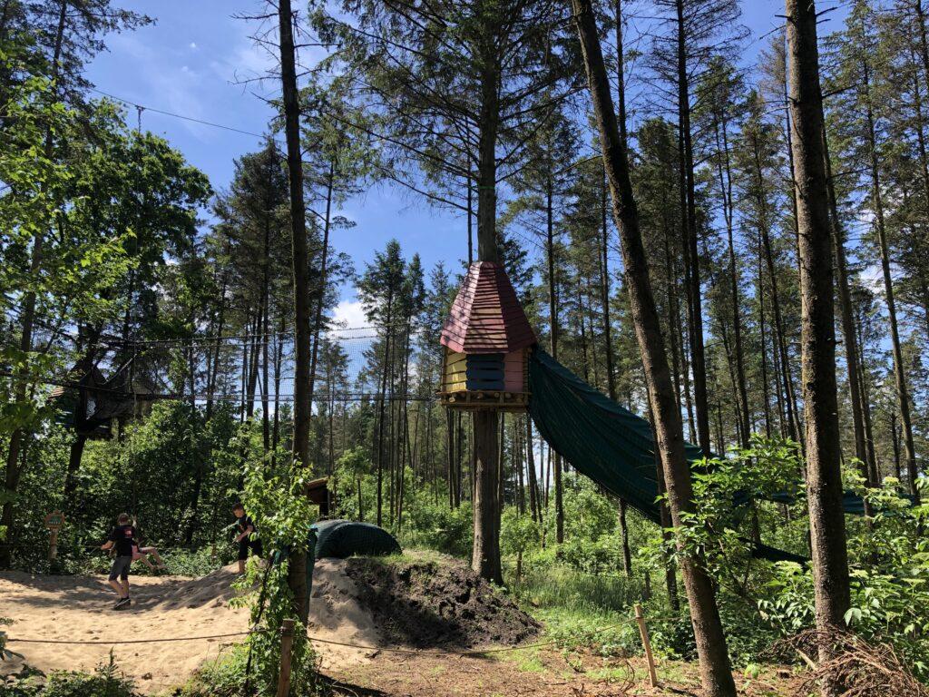 Fra træ til træ i WOW Park