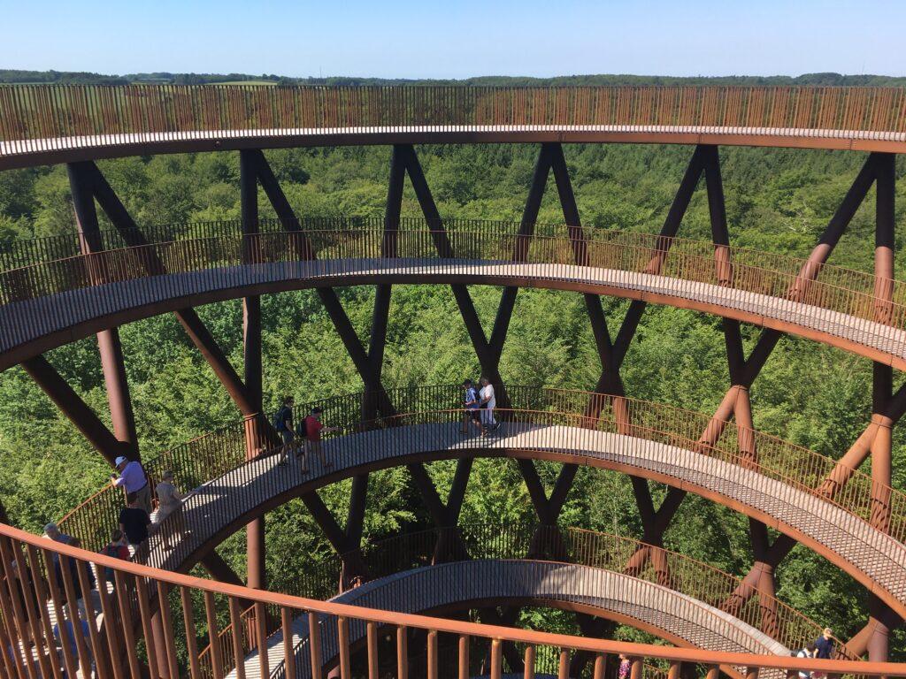 Over trætoppene i Skovtårnet