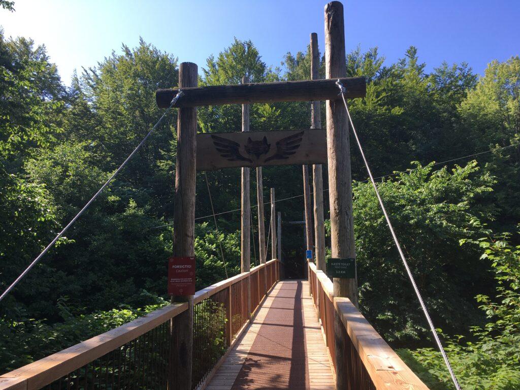Klar til naturvenlig vandretur til Skovtårnet