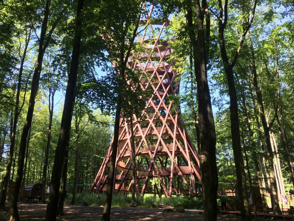 Skovtårnet kommer til syne imellem træerne