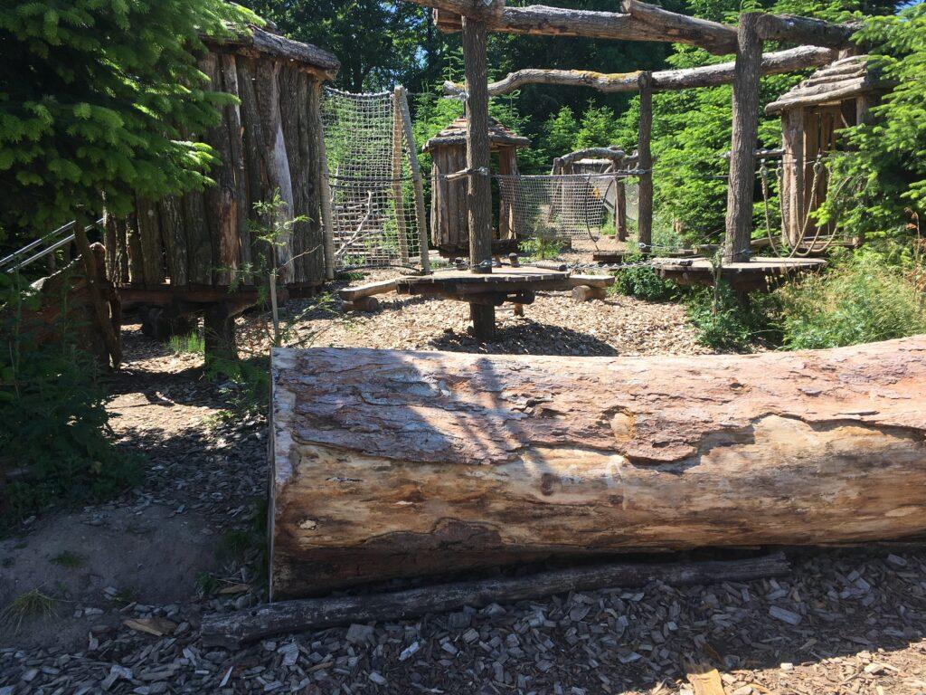 Klatrebane for de mindste ved Skovtårnet Camp Adventure
