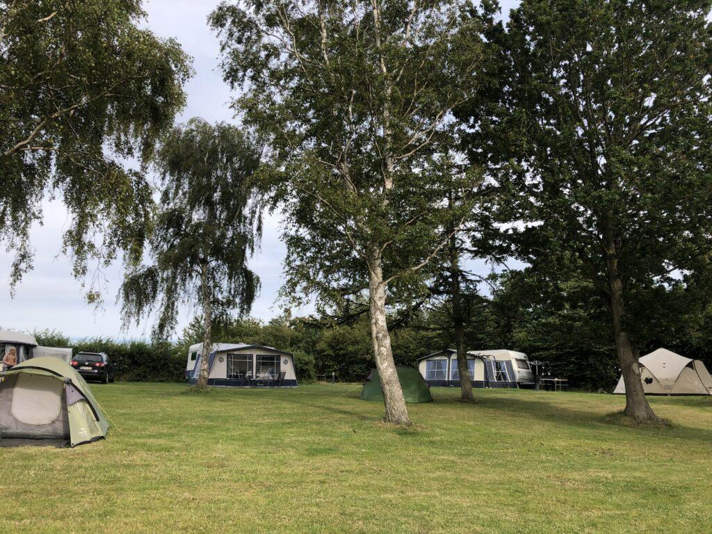 Vesterlyng Campings teltplads