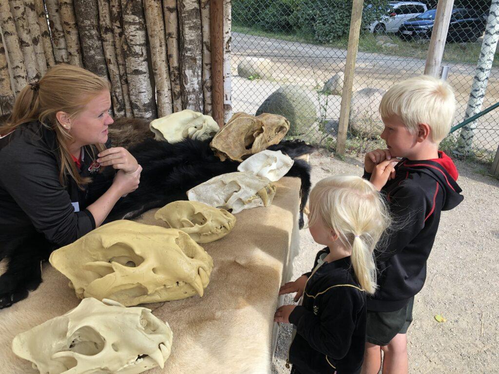 Fortællinger om istiden (Foto: Ferie og Børn)