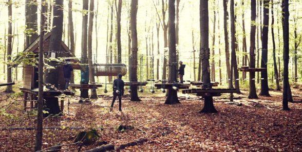 Gorilla Park giver udfordring for hele familien (Foto: Gorilla Park)