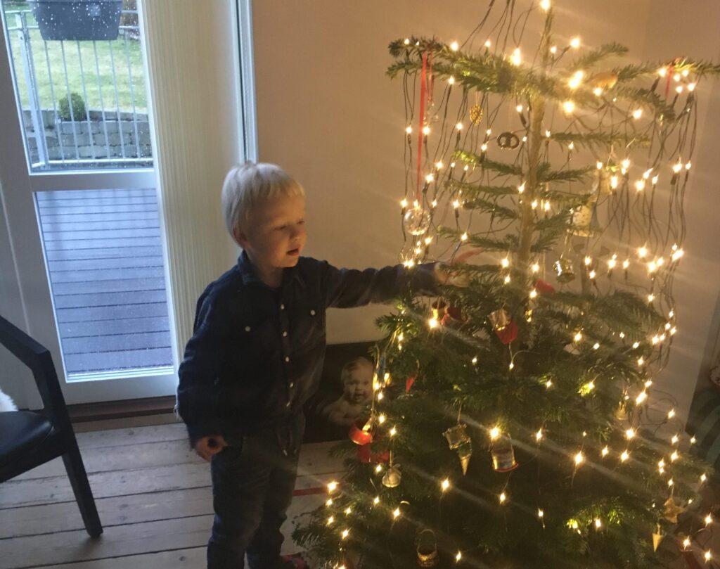 Juletræet pyntes (Foto: Ferieogbørn.dk)