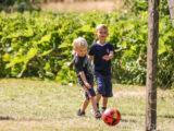 Bæredygtig familieferie i Vilgurd Camp (Foto: Vilgurd Camp)