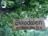 Ekko i Ekkodalen (Foto: Ferieogborn.dk)