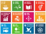 FN's verdensmål - Sammen redder vi verden