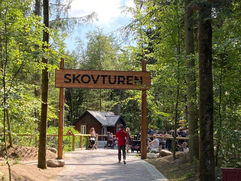 Fantastiske omgivelser på skovturen (Foto: Ferieogborn.dk)