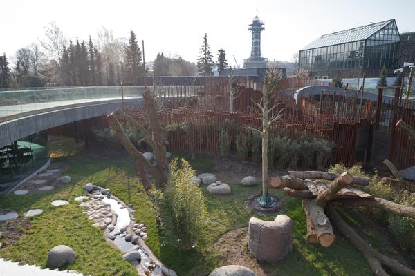 Zoologisk have København fejrer fødselsdag